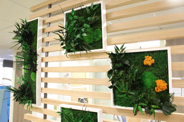 Décoration Claustra Green Time Espaces de bureaux modernes