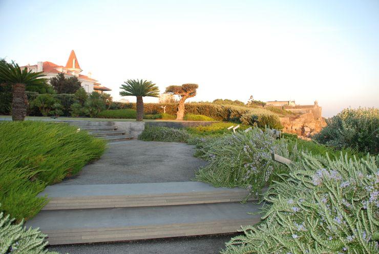 Verde Esquisso Lda. Modern garden