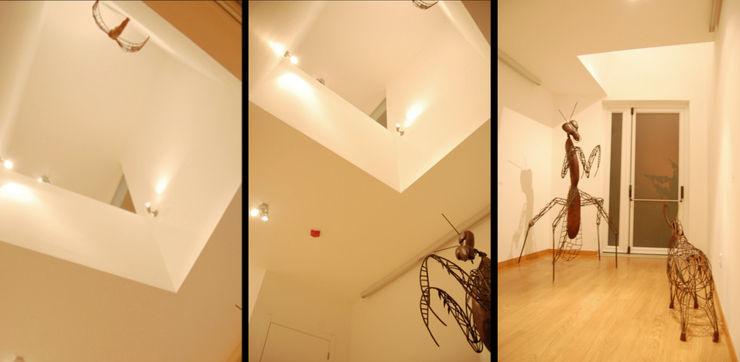 Peritraço Arquitectura Musées modernes