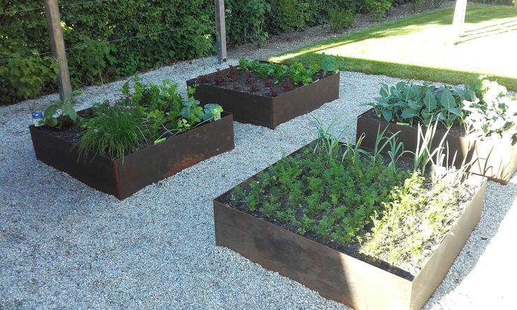 Garten mit Naturpool Galabau Michael Richter Moderner Garten