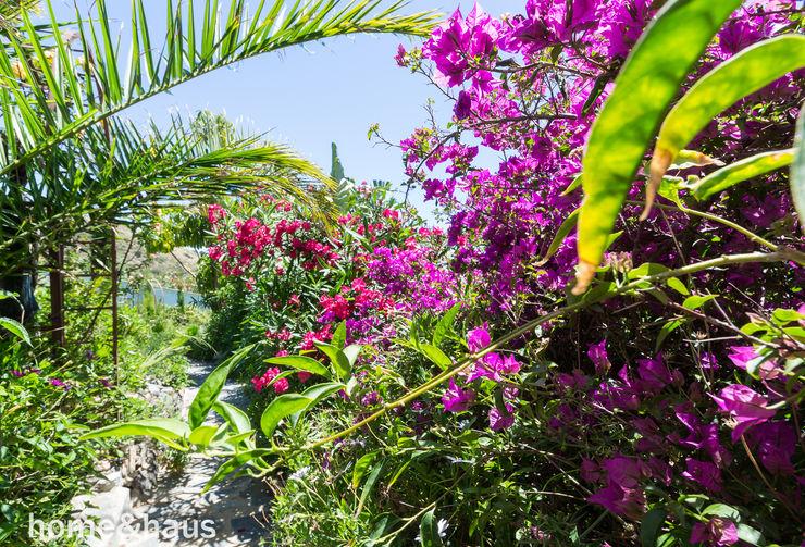 Jardín tropical Home & Haus | Home Staging & Fotografía Jardines de estilo mediterráneo Verde