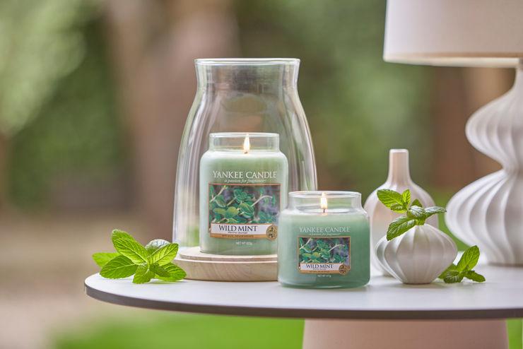 Spirig Kerzen AG Yankee Candle Switzerland Living roomAccessories & decoration Green