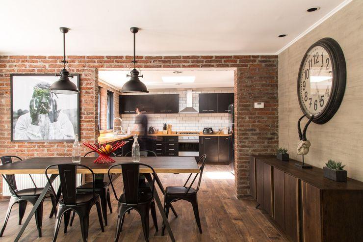 RENOarq Salle à manger moderne Briques Marron