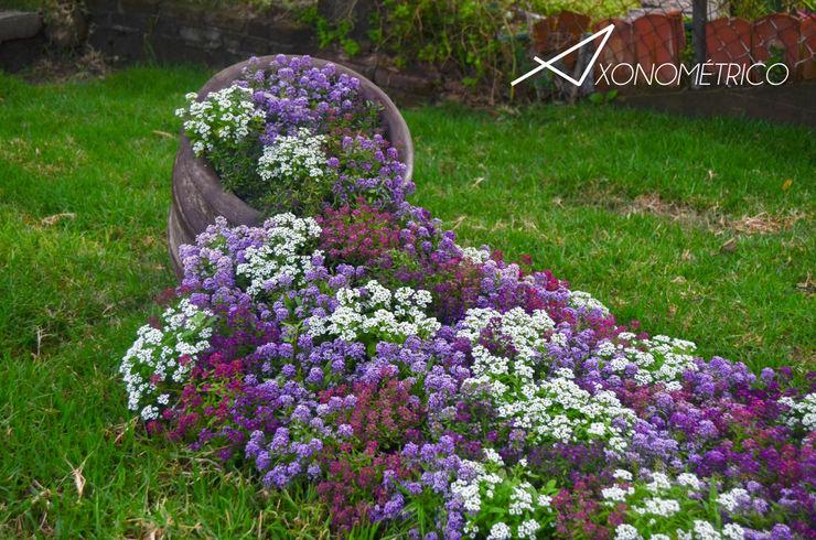Axonometrico Modern Garden
