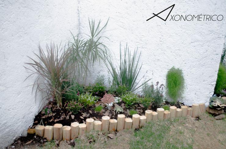 Plantas de sombra Axonometrico Jardines modernos