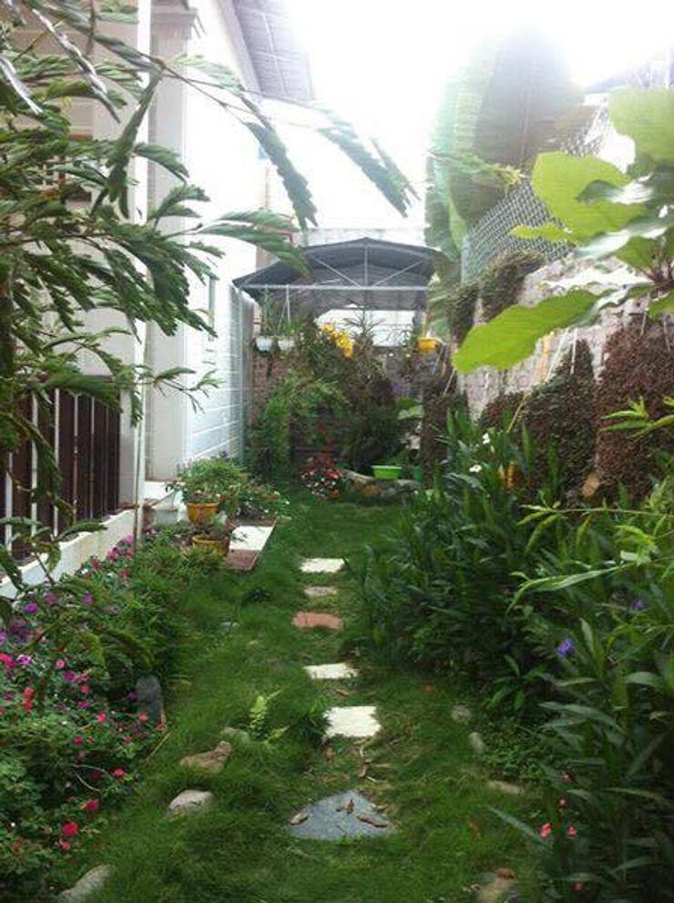 Linh Pham - homify Tropical style garden
