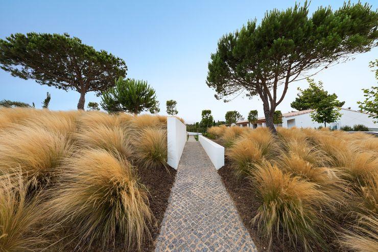 Villa Salema Jardíssimo Jardins mediterrânicos