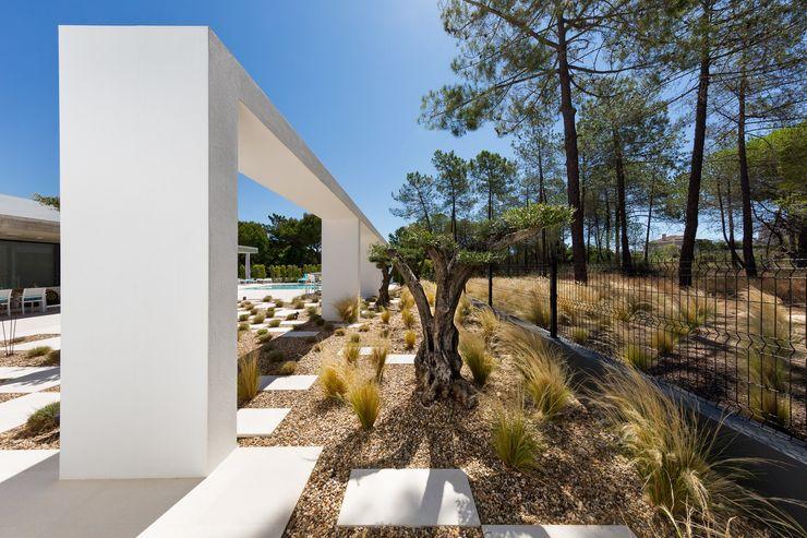 Villa Almancil Jardíssimo Jardins minimalistas