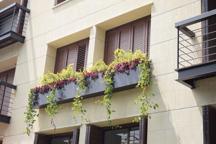 homify Windows & doors Blinds & shutters Aluminium/Zinc Wood effect