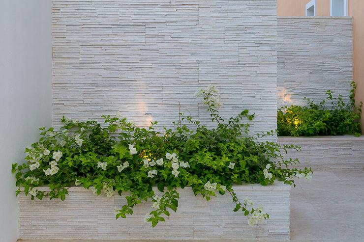 Project A Hortus Landscaping Works LLC بركة مائية