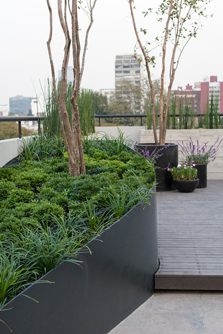 Hábitas Roof terrace Green
