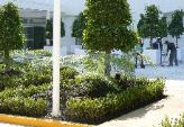 BARRAGAN ARQUITECTOS Modern hospitals