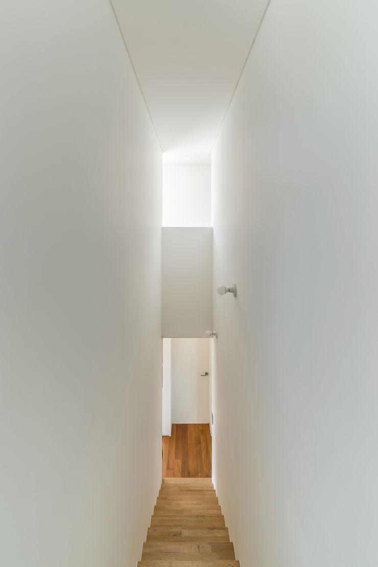 stpmj Pasillos, vestíbulos y escaleras modernos