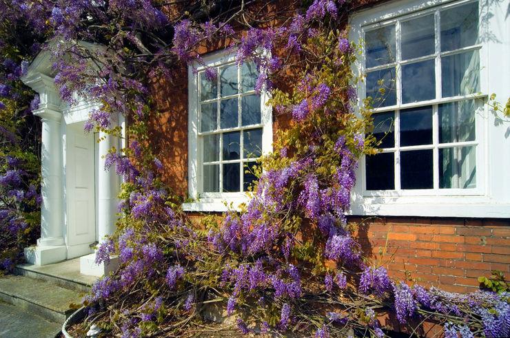 Sash Window Experts Sash Window Experts Classic windows & doors