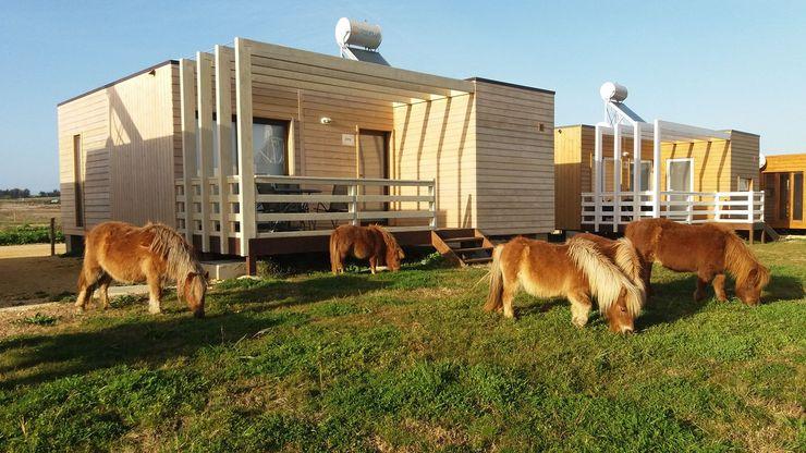 Casa Zmar - JGDS-EPA - CASAS MODULARES Casas modernas