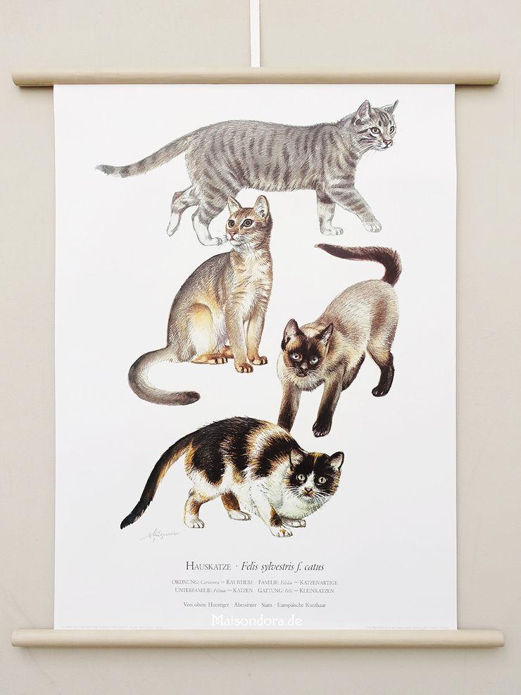 Maisondora Vintage Living HouseholdStorage Paper Multicolored