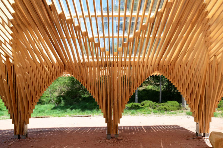Drevo - Wood Solutions Lda Front yard