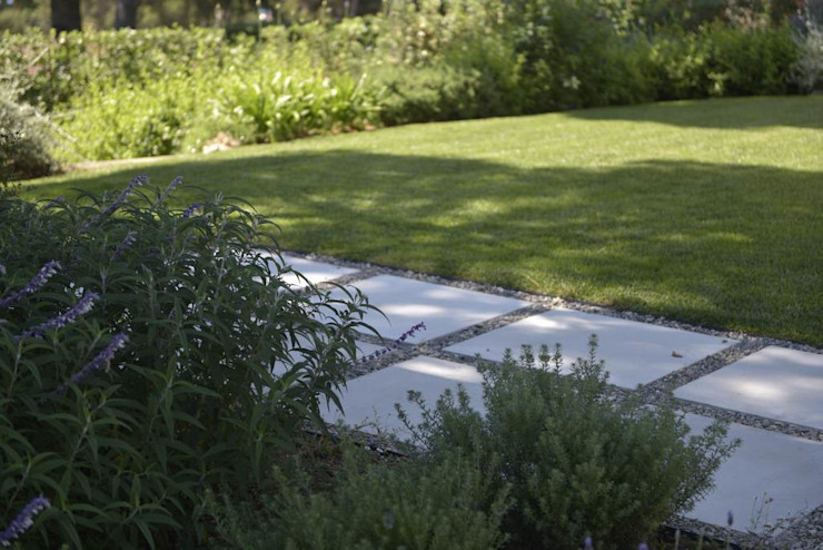 Ecossistemas Modern garden