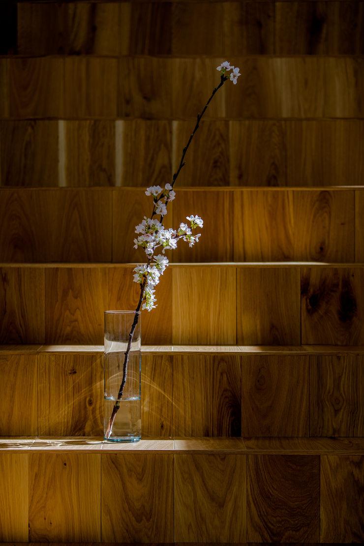 TKD-ARCHITECT Вітальня Дерево Дерев'яні