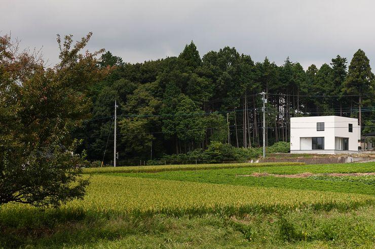 外観 石川淳建築設計事務所 木造住宅 白色