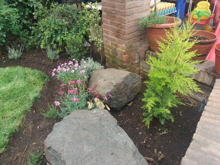 Rincón de piedras y plantas en La Reina homify Antejardines