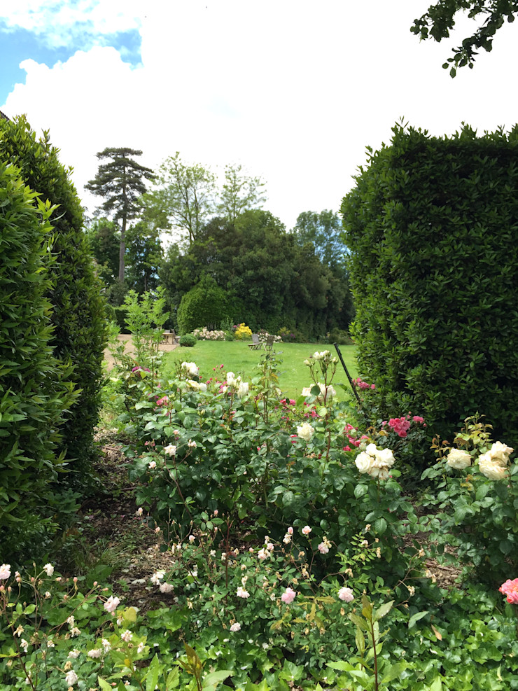 Rosa rosa rosam Paradeisos conception de jardin Jardin rural