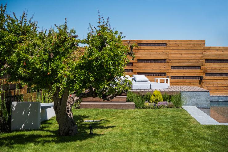 Diseño y construcción de piscinas y jardines zen en Madrid AGi architects arquitectos y diseñadores en Madrid Piscinas de estilo moderno Madera Acabado en madera