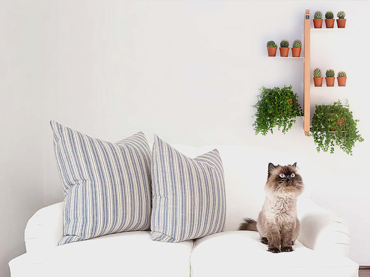 Le zie di Milano Living roomShelves Wood