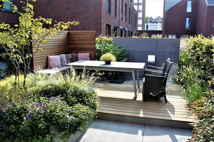 Kleine stadstuin Hoveniersbedrijf Guy Wolfs Moderne tuinen