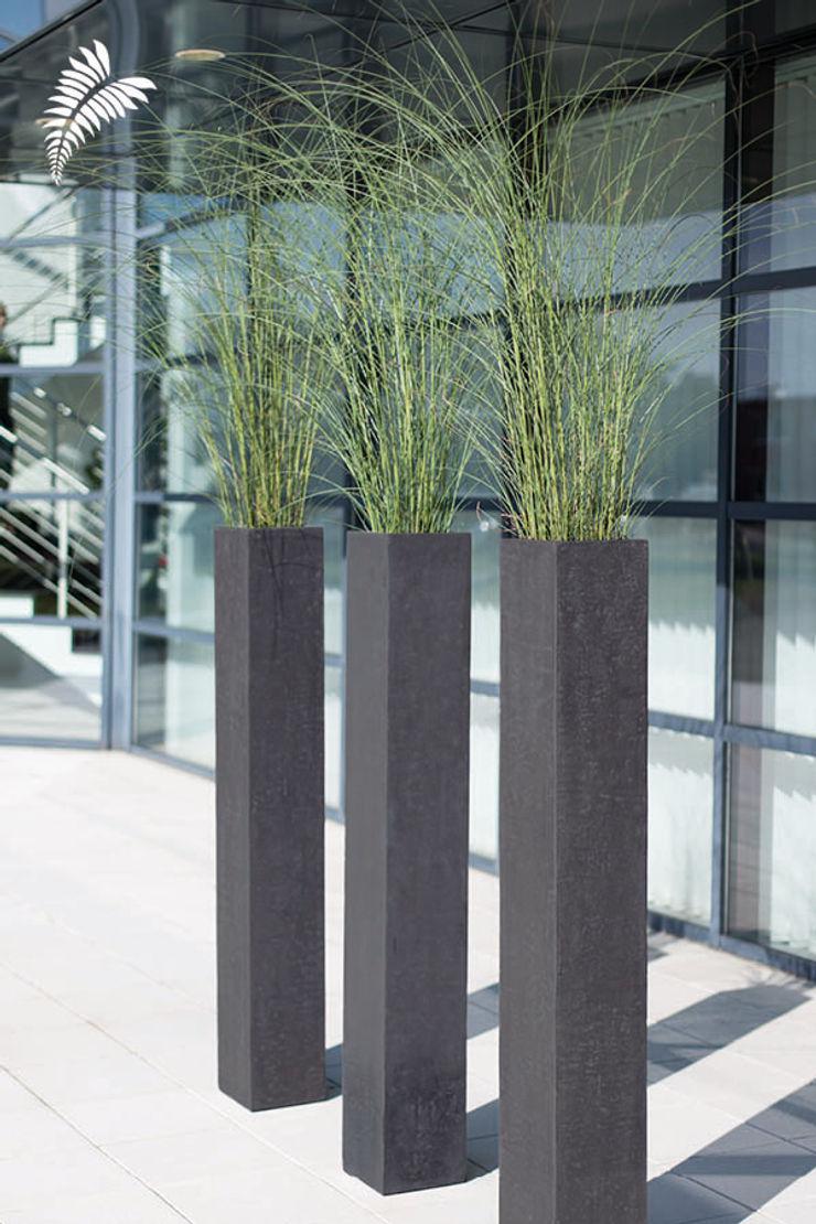arts&more Balconies, verandas & terraces Plants & flowers Concrete Grey