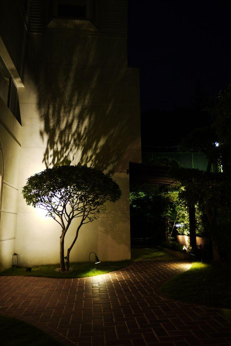 夜晚樹影透過燈光投印在屋外白牆上呈現一幅美麗的畫面 大地工房景觀公司 Garden Plants & flowers