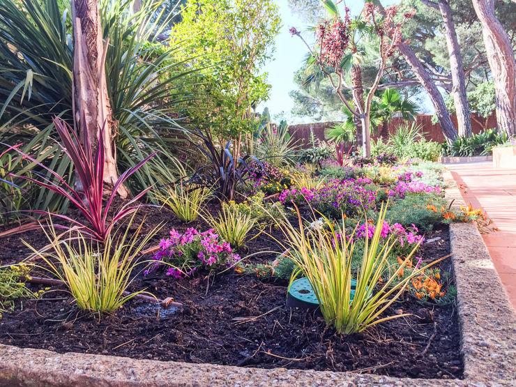 Detalle del parterre lateral a la casa Nosaltres Toquem Fusta S.L. Jardines de estilo tropical