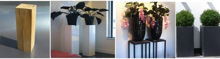 sokkel en zuilen Corridor, hallway & stairsAccessories & decoration