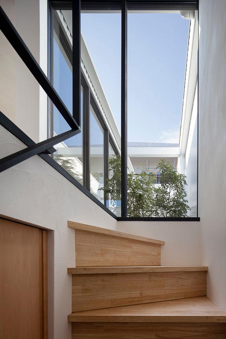 arbol Stairs