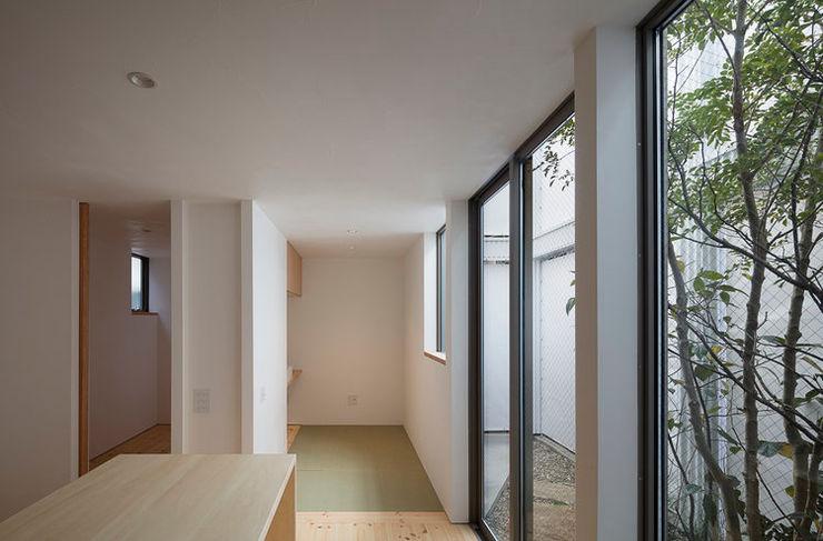 arbol Minimalist dining room