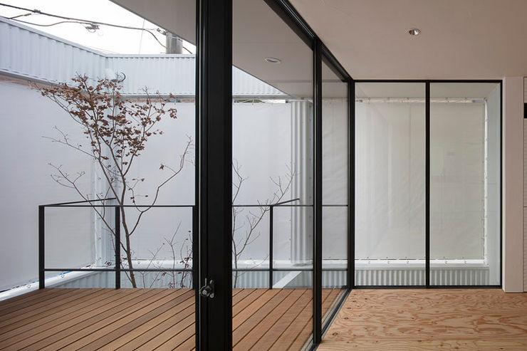 arbol Minimalist conservatory