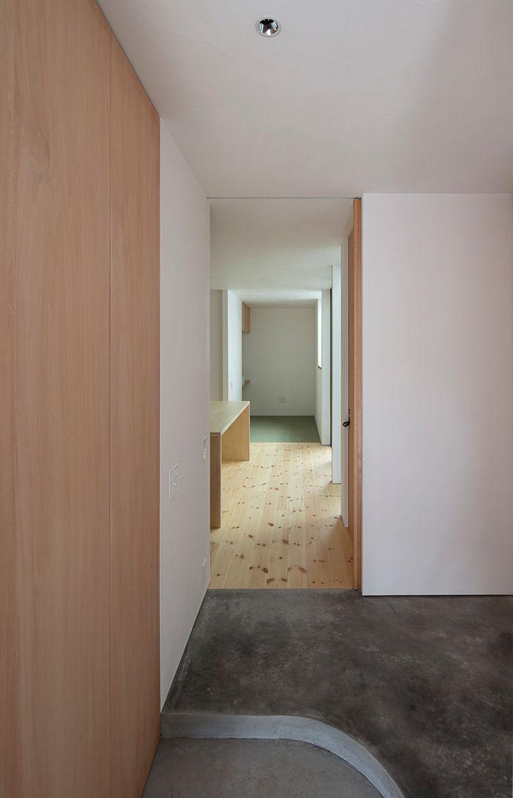 arbol Minimalist corridor, hallway & stairs