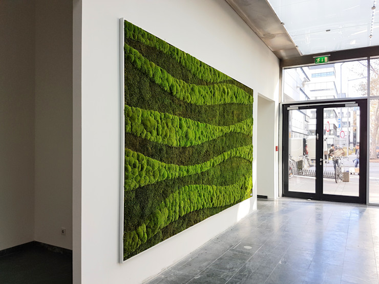 Mooswand AMMON Raumbegrünung Ausgefallene Geschäftsräume & Stores Grün