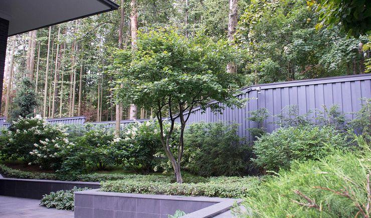 Пять уровней комфорта КП <q>Жуковка</q> ARCADIA GARDEN Landscape Studio Сад в стиле модерн