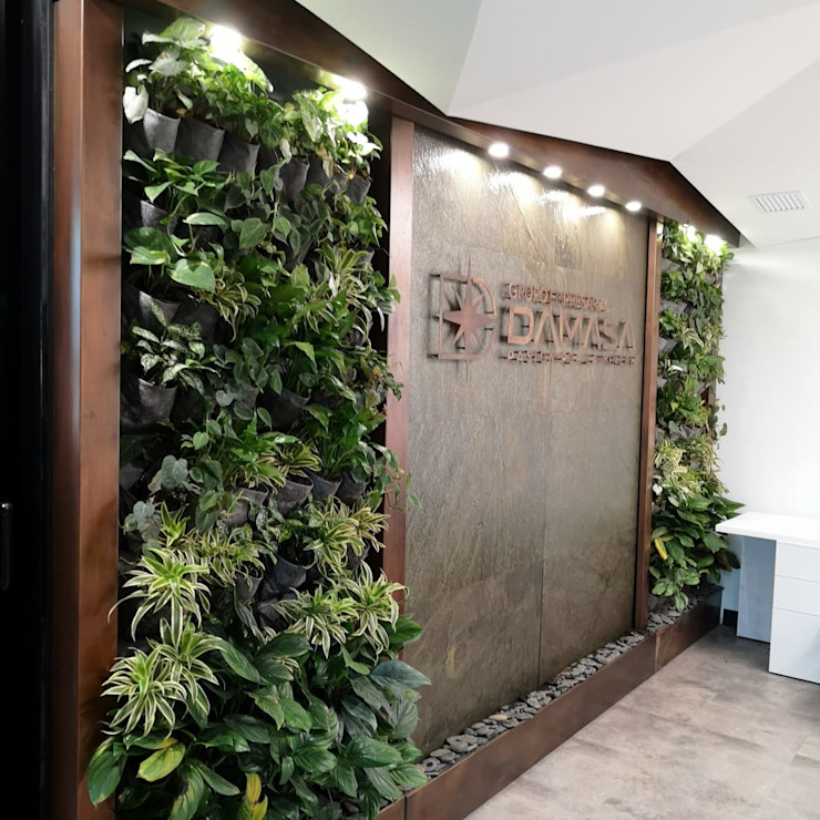 AWA FUENTES Office spaces & stores Stone