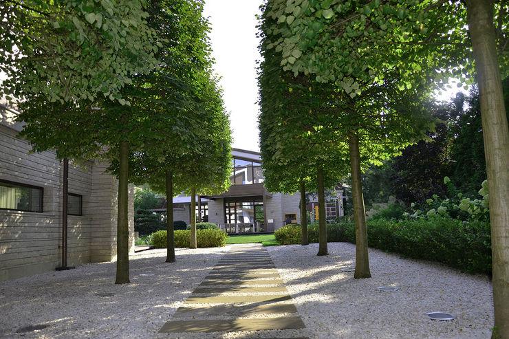 Вилла с садом в стиле модерн. КП Бенелюкс. 2012 г ARCADIA GARDEN Landscape Studio Сад в стиле модерн