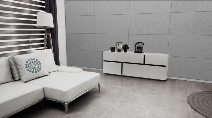 Loft Design System Deutschland - Wandpaneele aus Bayern Paredes y pisos de estilo moderno Concreto Gris