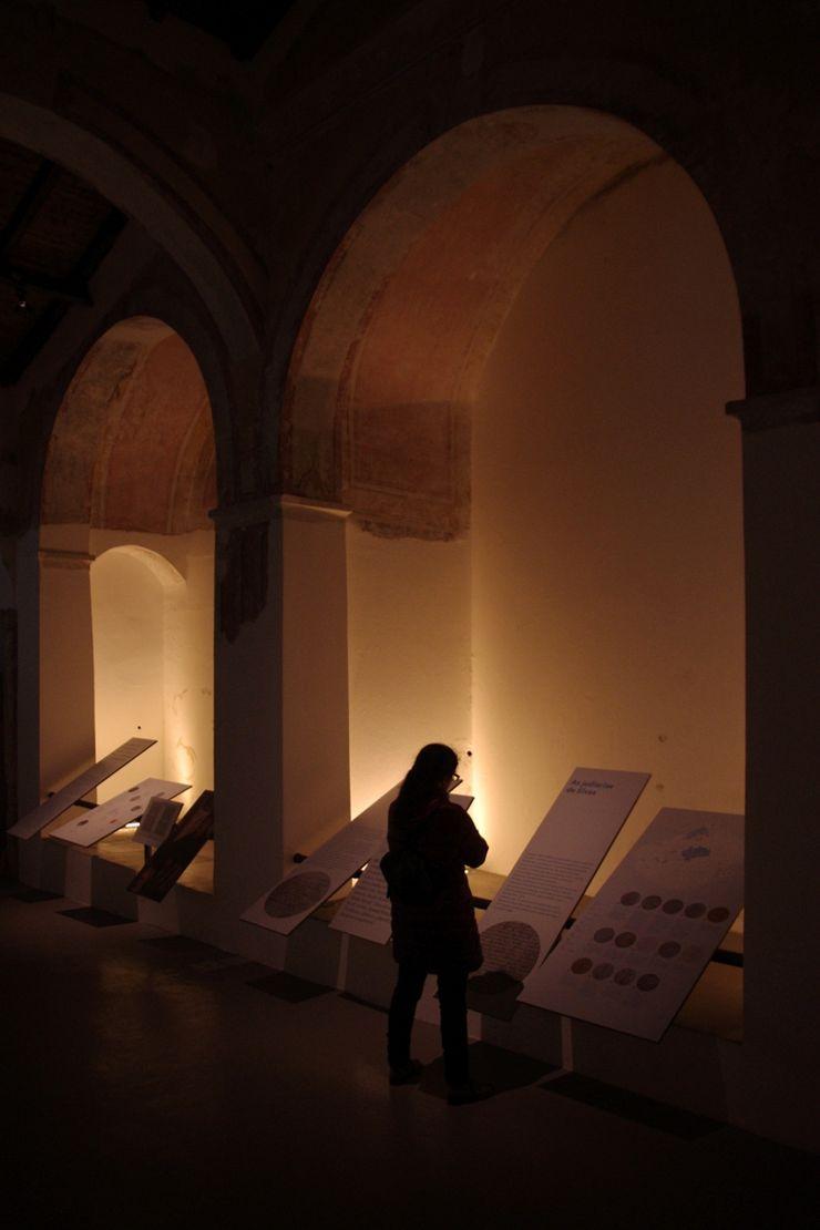 Visual Stimuli جدران