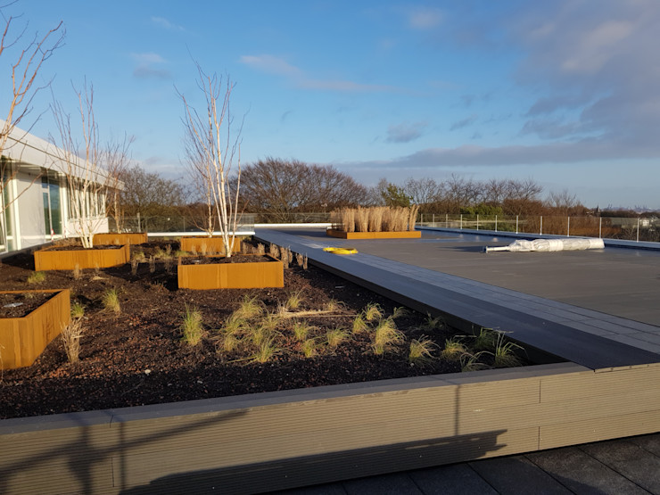 Dachterrasse mit Begrünung und Pflanzbeeten Zimmerei Nehls Dachterrasse