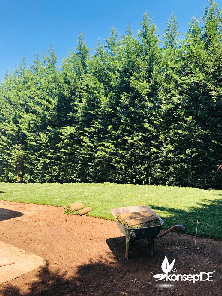 konseptDE Peyzaj Fidancılık Tic. Ltd. Şti. Classic style garden