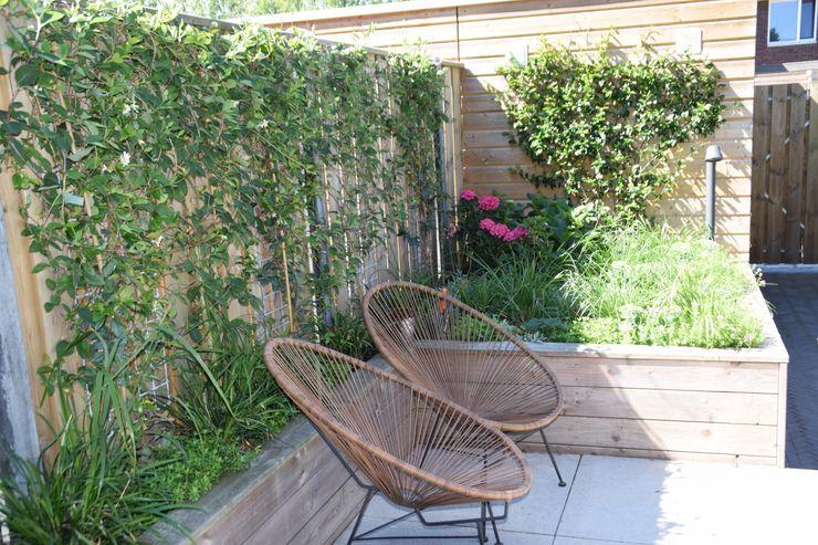 Sfeervolle tuin Dutch Quality Gardens, Mocking Hoveniers Moderne tuinen