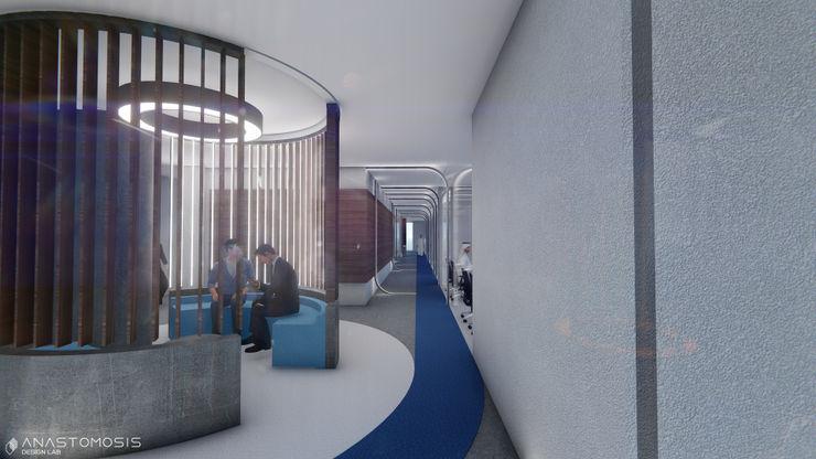 Anastomosis Design Lab Oficinas y Tiendas