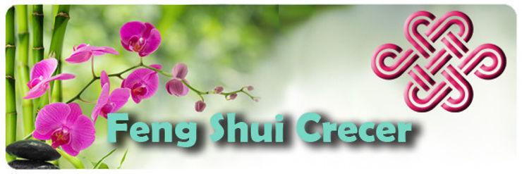 Feng Shui Crecer CasaAccessori & Decorazioni