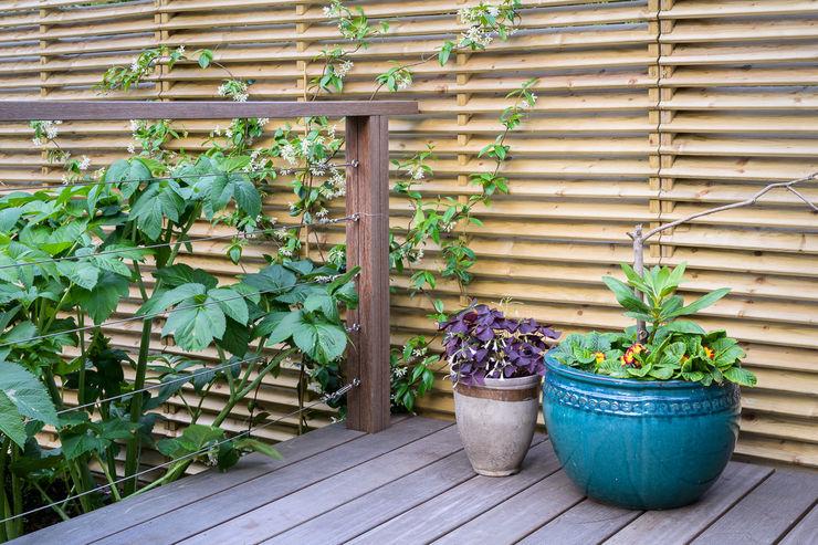 Hit and miss fencing Earth Designs Zen garden