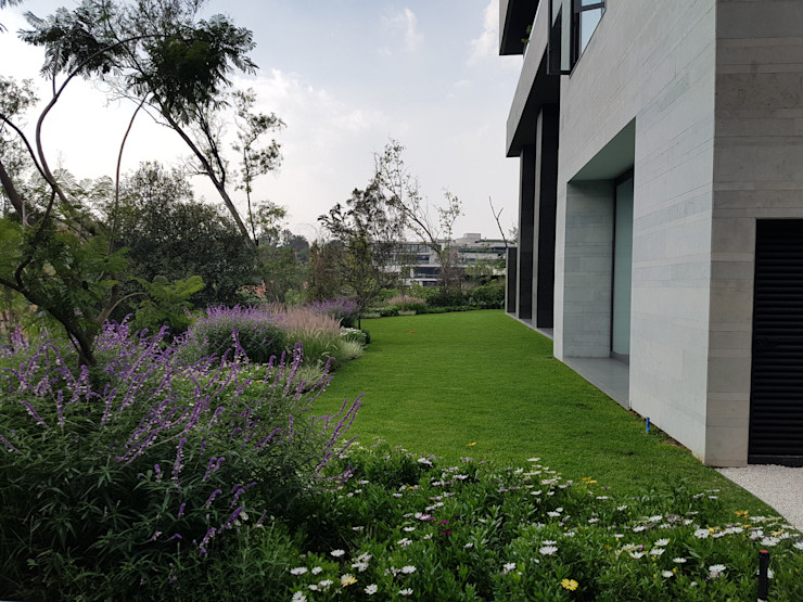 Paisajismo en Mil Cumbres Solution Culture Jardines modernos Verde